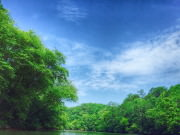 Chattahoochee River kayaking