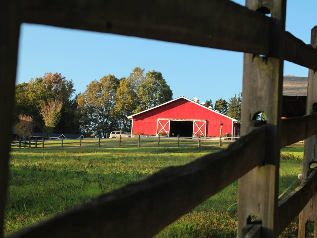 The ranch offers several outdoor activities such as a low ropes coarse and riding lessons.