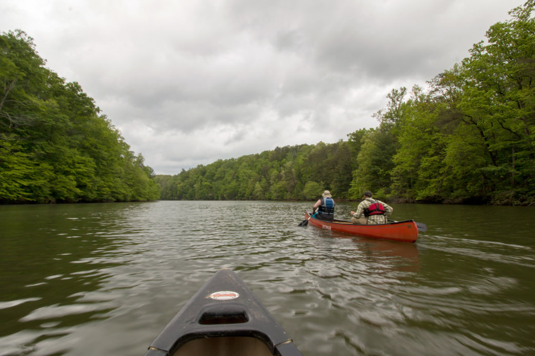 Canoeing on Philpott Lake gives paddlers a true escape into nature. Jenna Herzog