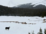 Brainard Lake on a Snowy Day