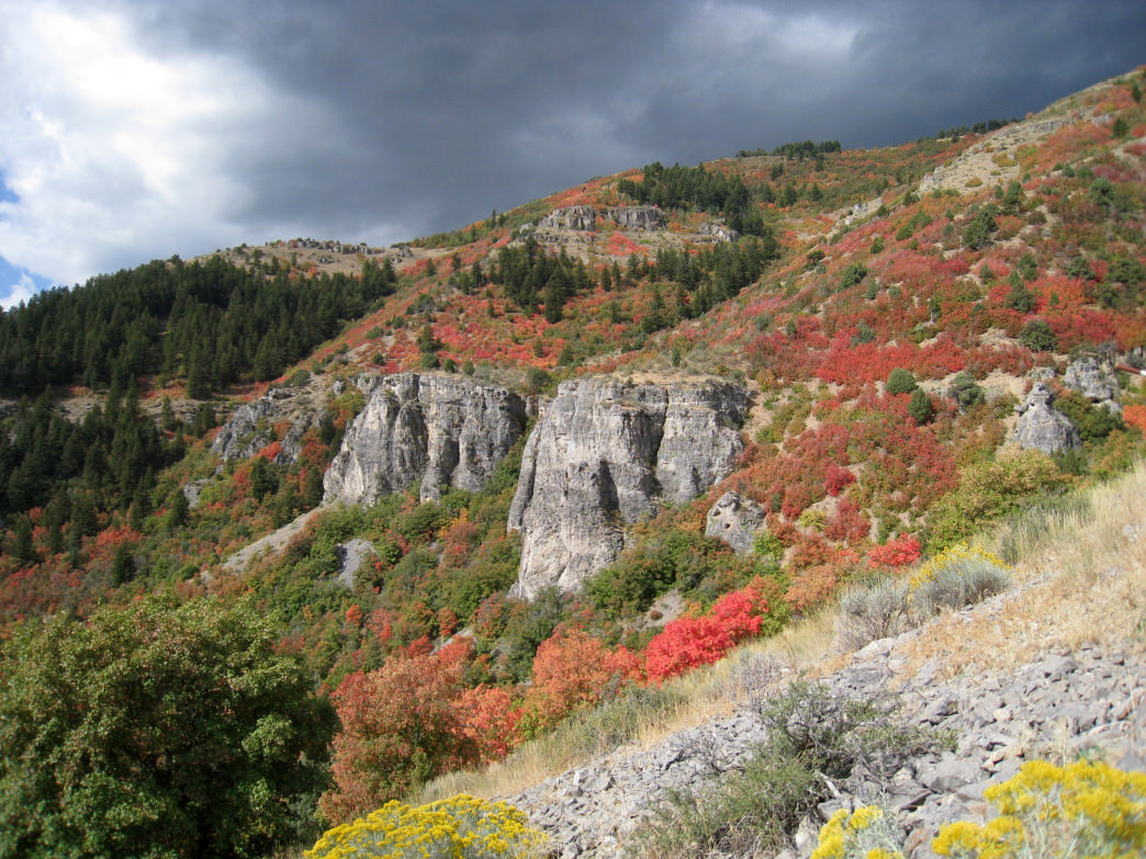 The canyon is now a magnet for rock climbers, hikers, bikers, horseback riders, and fly-fishing enthusiasts.