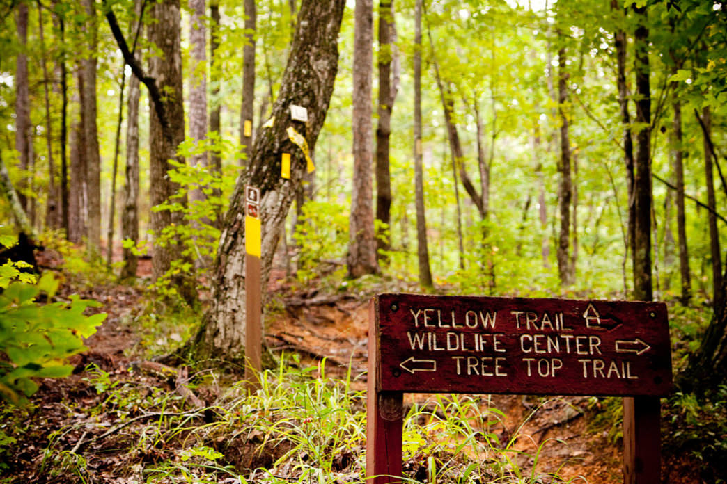 Oak Mountain State Park is a popular destination for trail runners and the site of several races in the Southeastern Trail Series.