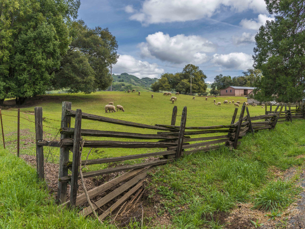 The bucolic beauty of Anderson Valley makes it an awesome getaway.