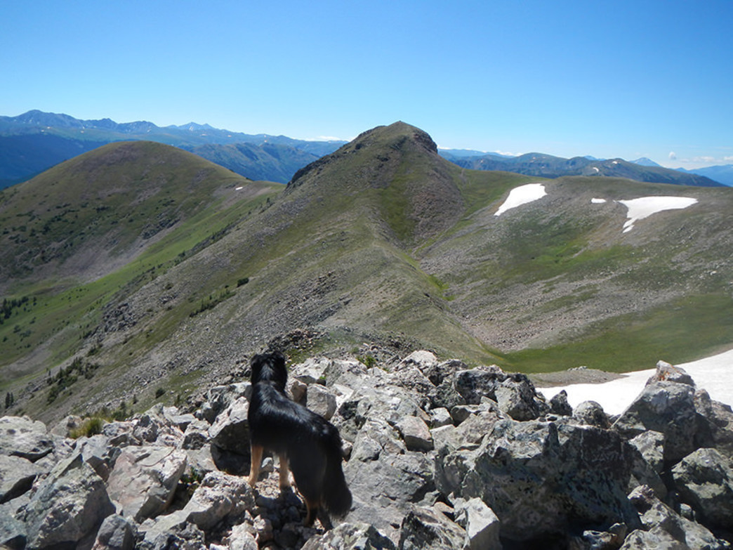 Looking south to the summit of Ute Peak from Point 12,225.