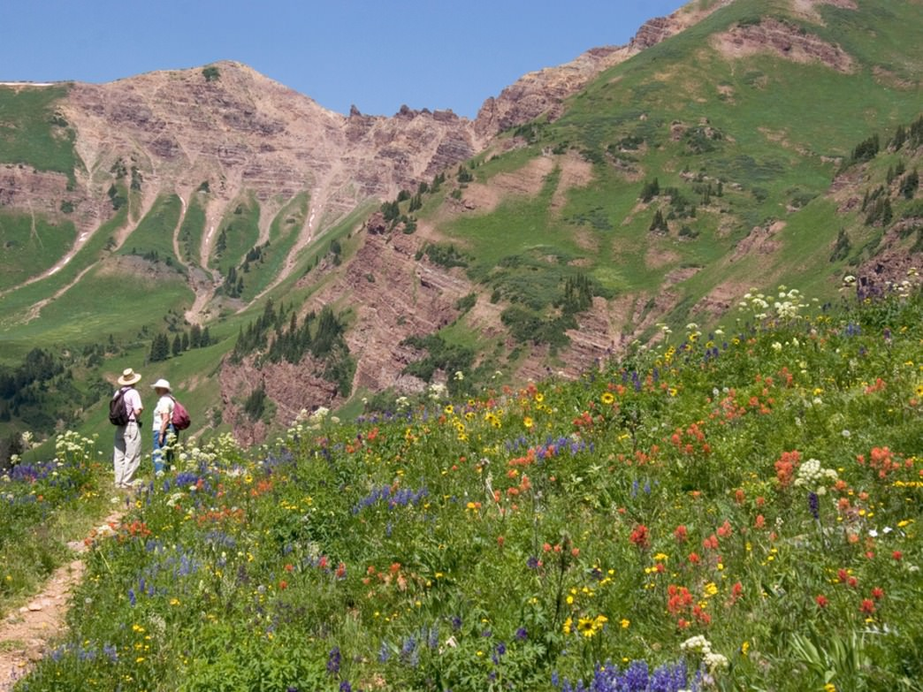 The 12-mike hike from Aspen to Crested Butte is beautiful with wildflowers in bloom.