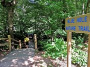 20170612_Tennessee_Chattanooga_Red Clay State Park_Hiking1