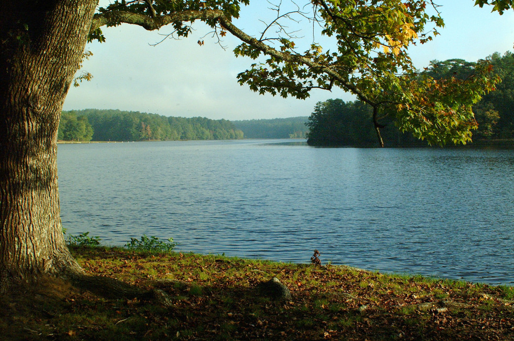 The 110-acre Payne Lake in the Talladega National Forest is one of the landmarks to be incorporated into the Alabama Trail.