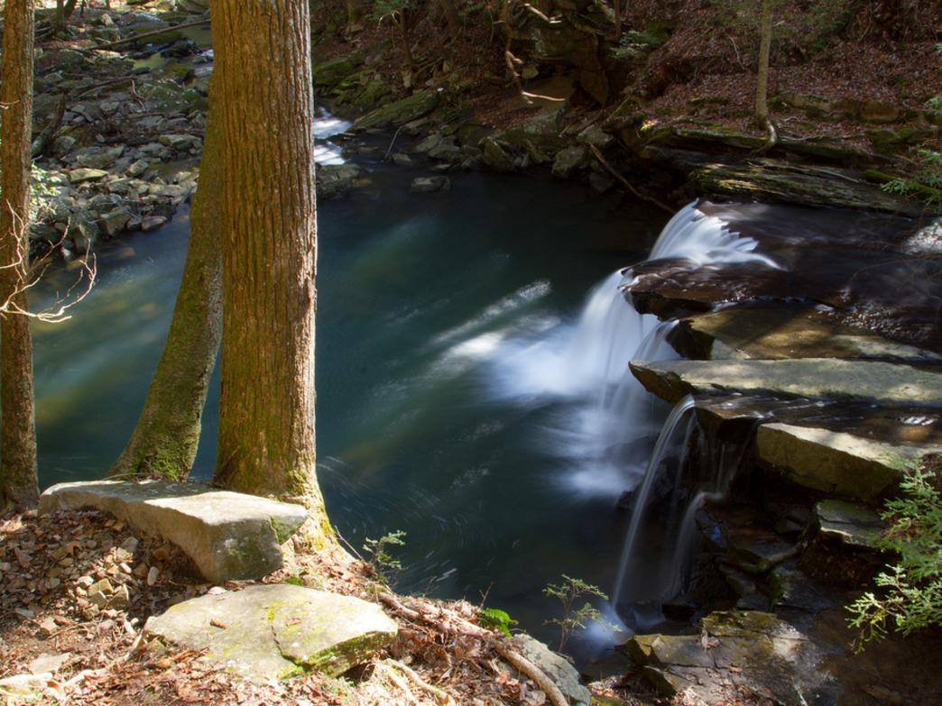 Hanes Hole Falls is accessible via a Grundy Forest Day Loop near the longer Fiery Gizzard Trail, but not directly on it.