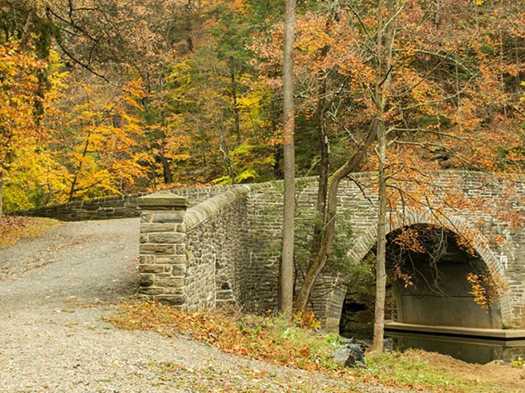 Wissahickon Valley Park offers the best climbing in Philadelphia.