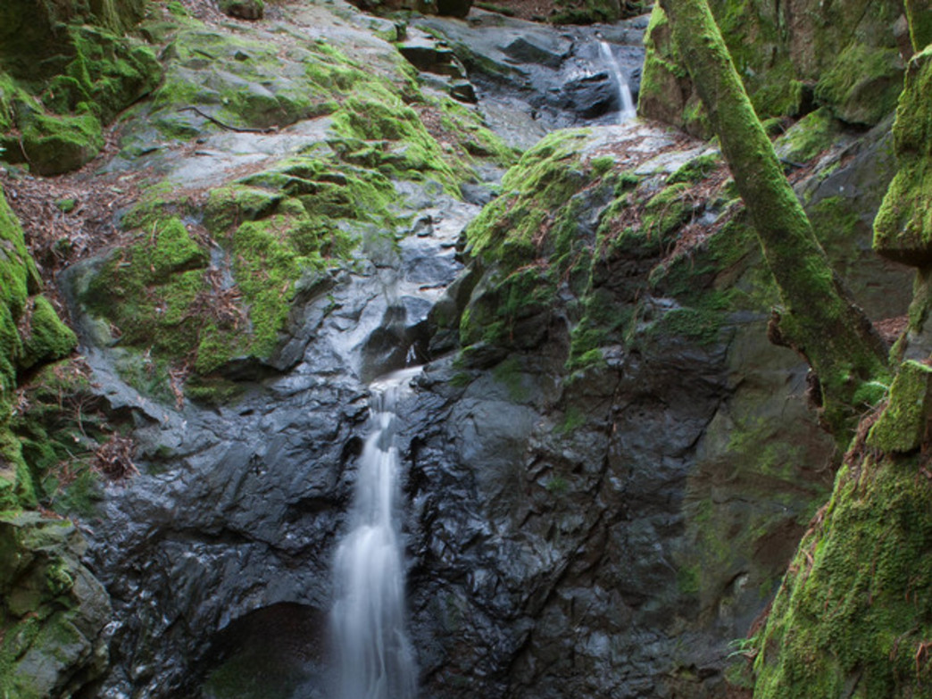 Mossy Cascade Falls in Marin County.