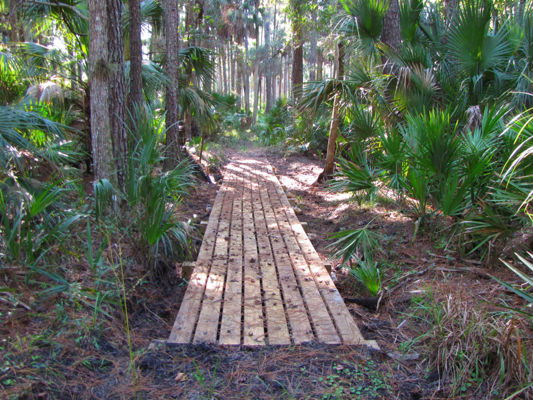 Seminole State Forest Hiking