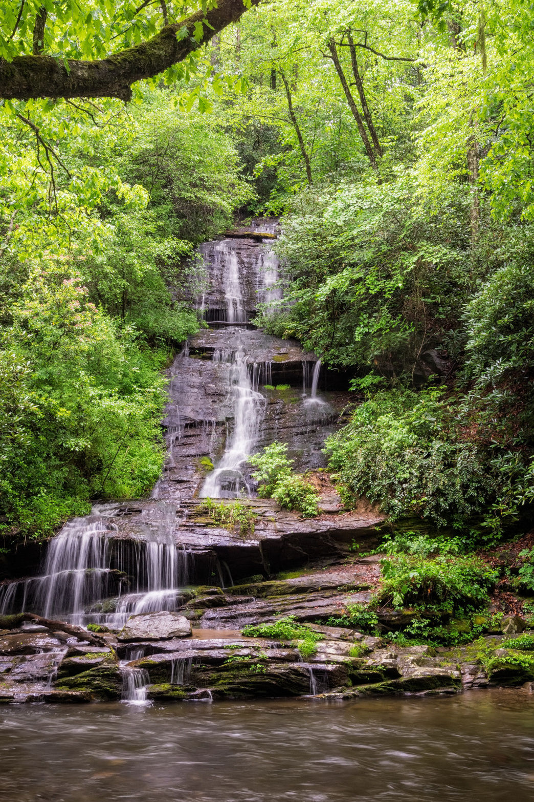 The hike to Tom Branch Falls is great for families.
