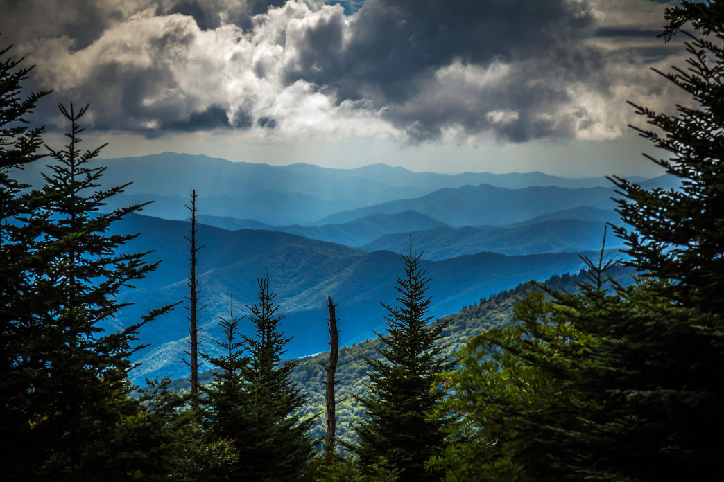 The view from Clingmans Dome.     Lauren Brooks