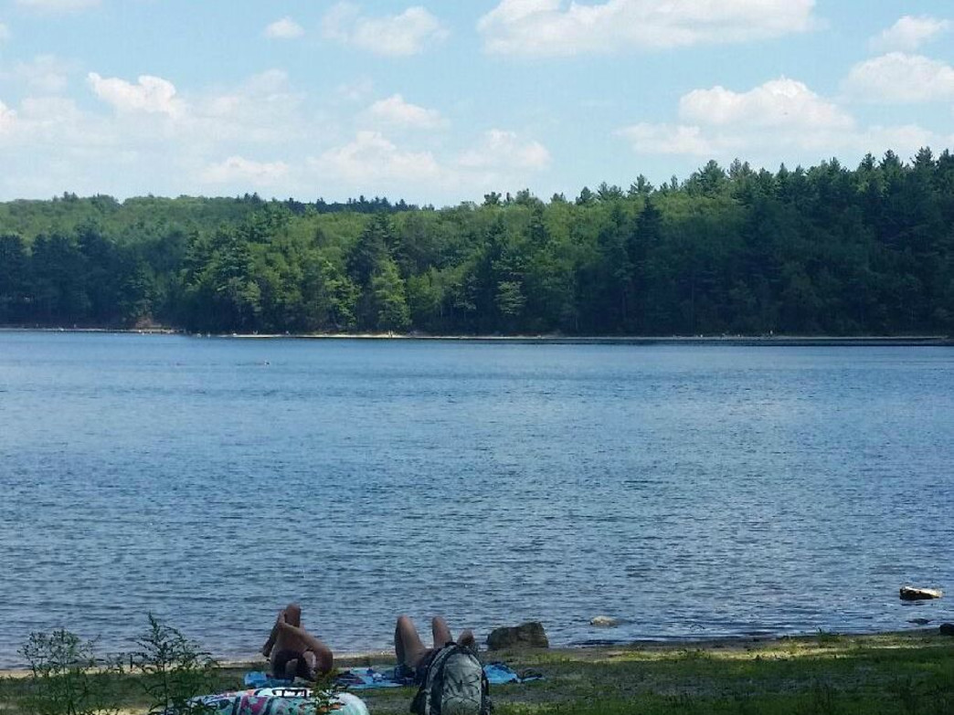 Another if the four hidden beaches at Walden Pond
