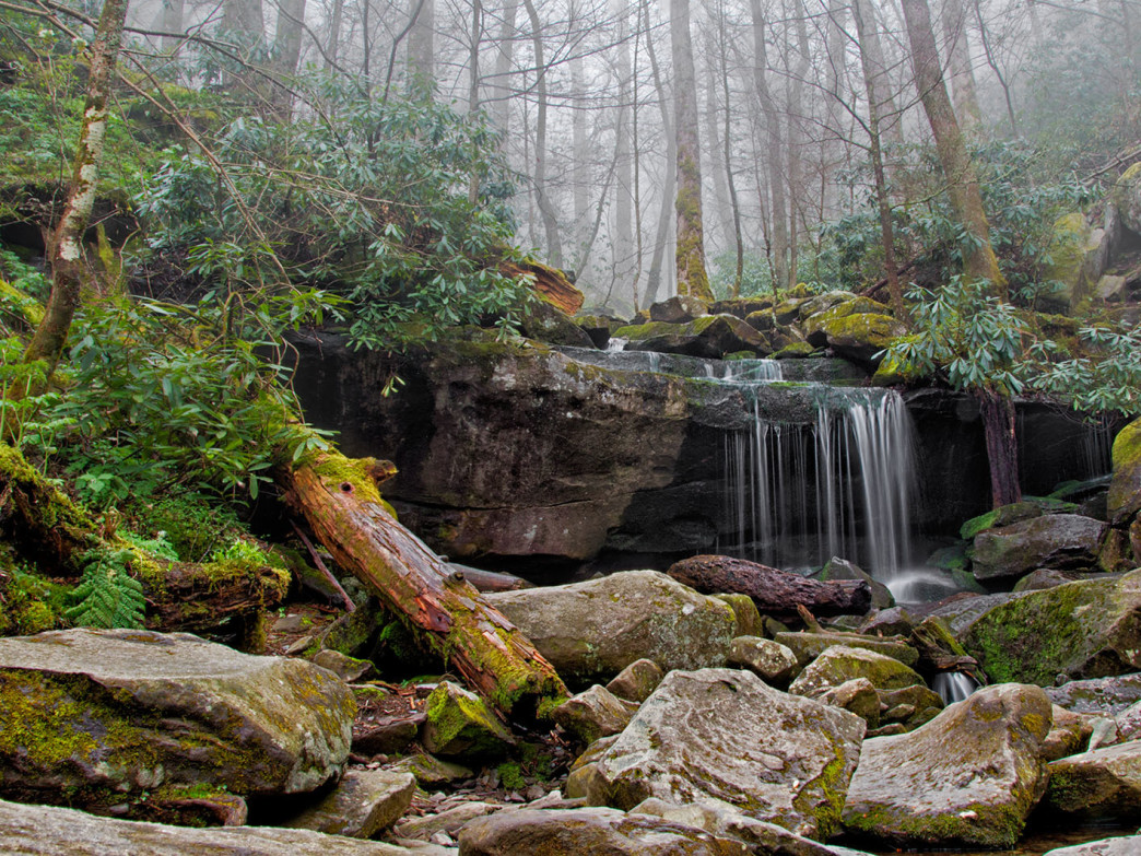 The Rainbow Falls Trail to the top of Mt. LeConte offers impressive sights all the way up.