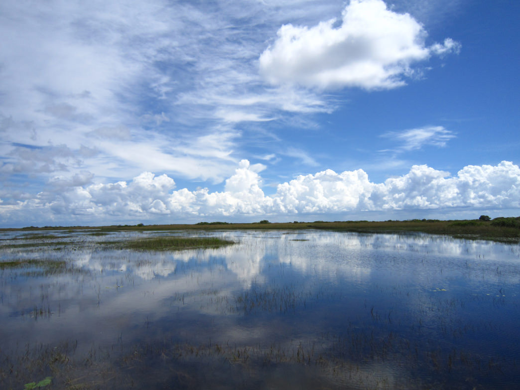 The headwaters of the Everglades start in the Orlando area and encompass the Kissimmee Chain of Lakes.