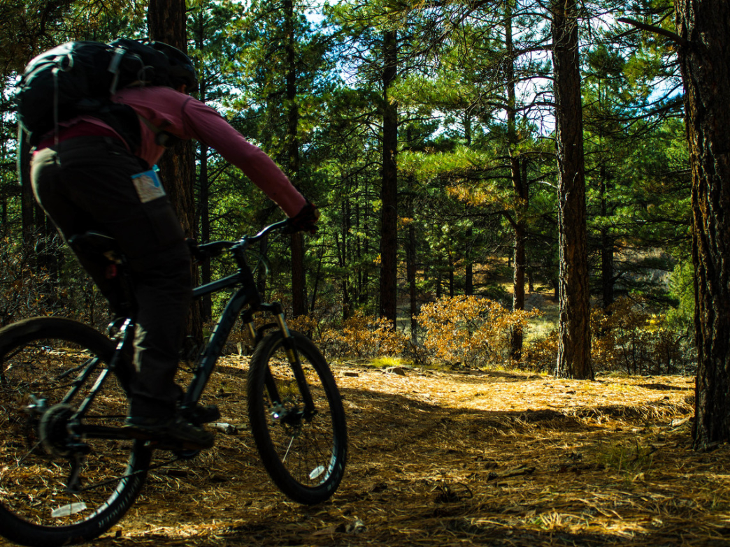 A cyclist rolls down the trail on the Boggy Draw Loop.
