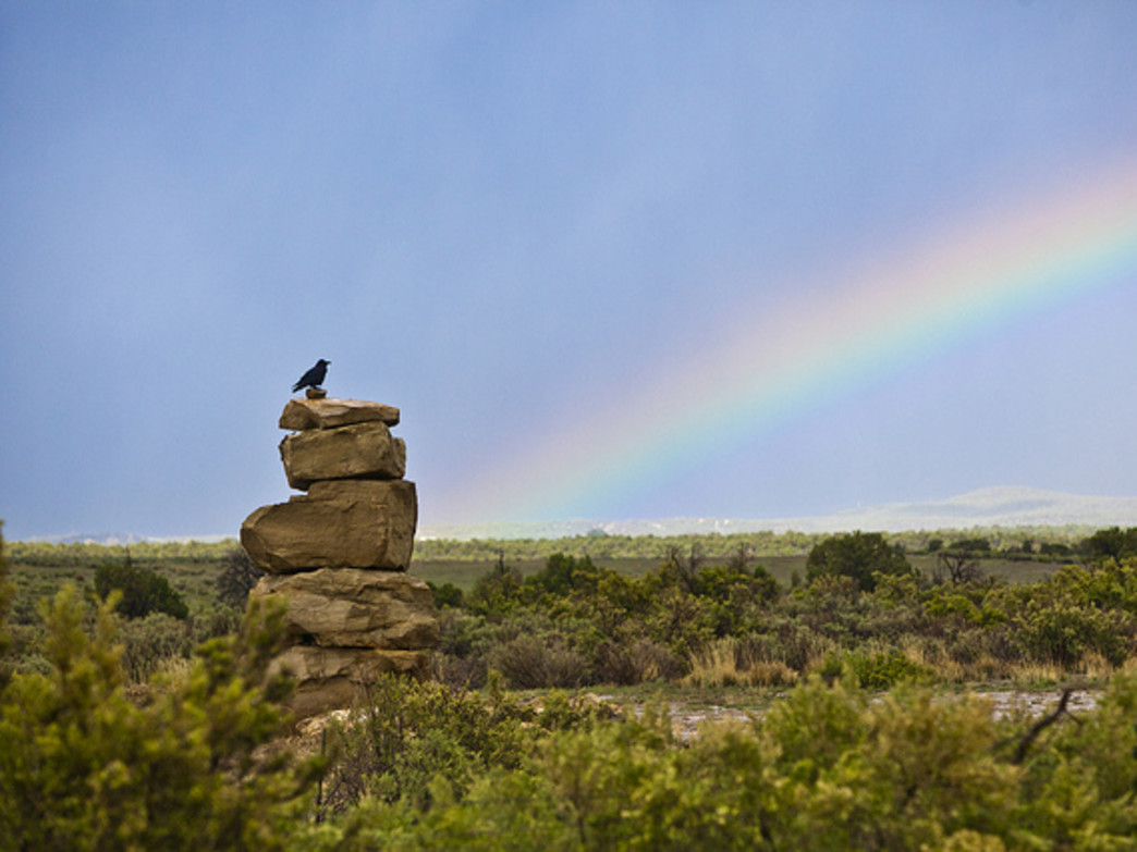 Ravens and rainbows at Mesa Verde National Park.