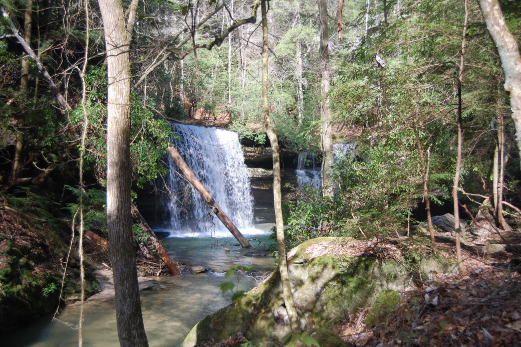 10 Best Campsites In Alabama Eureka