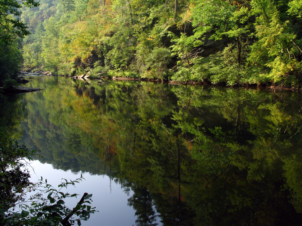 The Tellico River is one of many waterways running through the Cherokee National Forest.