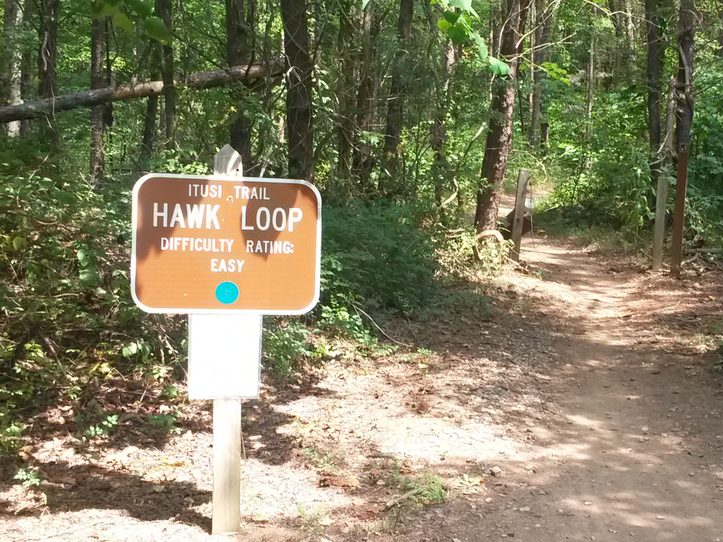 The fast and flowy trails at Lake Norman State Park are great for a long run