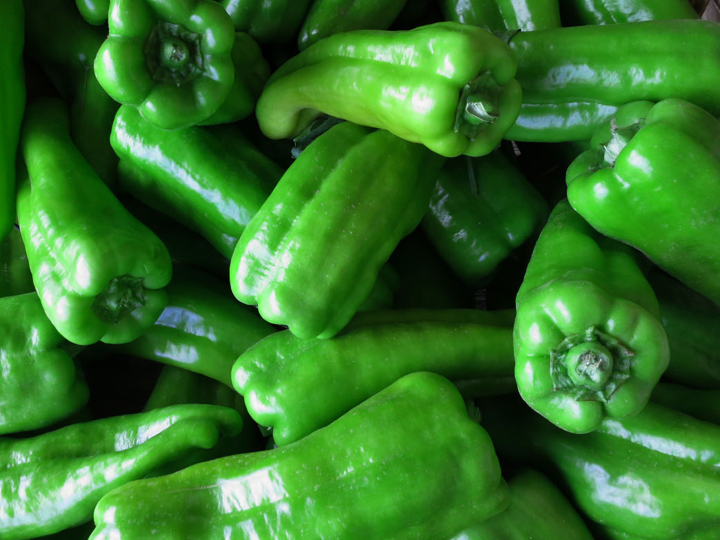 The San Luis Valley is a great place to taste everything that can be made with green chiles.