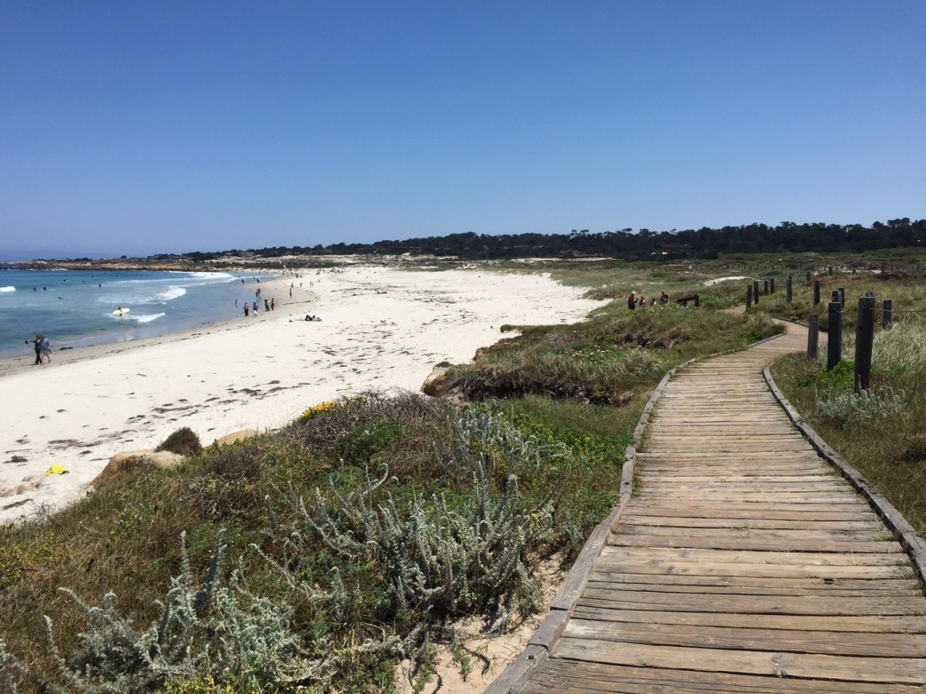 Running along the boardwalks at Asilomar State Beach gives amazing views of the ocean.