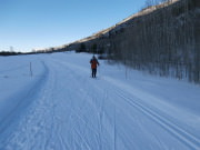 Image for North Star Preserve Cross-Country Skiing