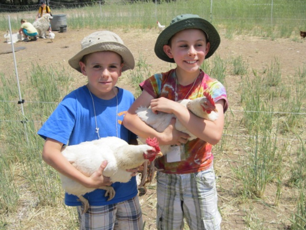 Kids love getting up close and personal with the animals at Venetucci Farm during the summer programs.