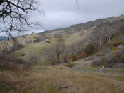 Image for Ohlone Wilderness Trail