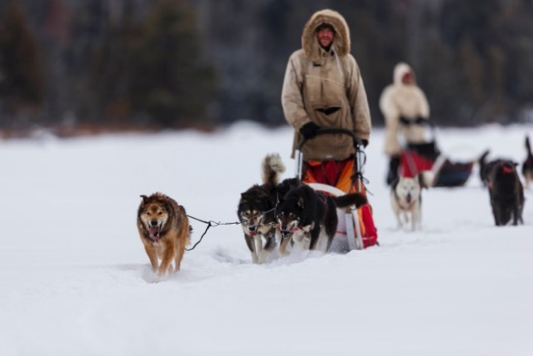 White Wilderness has a trip for every winter outdoor enthusiast.