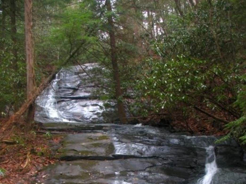 Fall Branch Falls brings more visitors to this section of the trail.