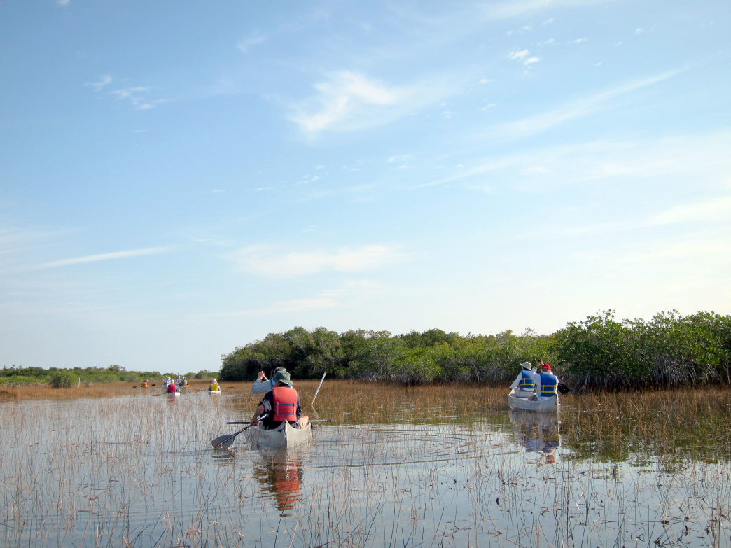 Paddling is a popular way to explore the headwaters of the Everglades.