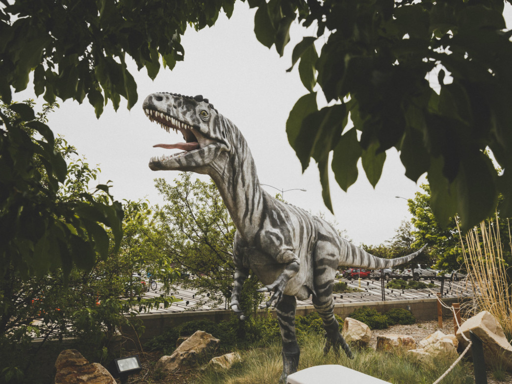 A full-size dinosaur replica welcomes visitors at the Utah Field House of History State Park Museum.