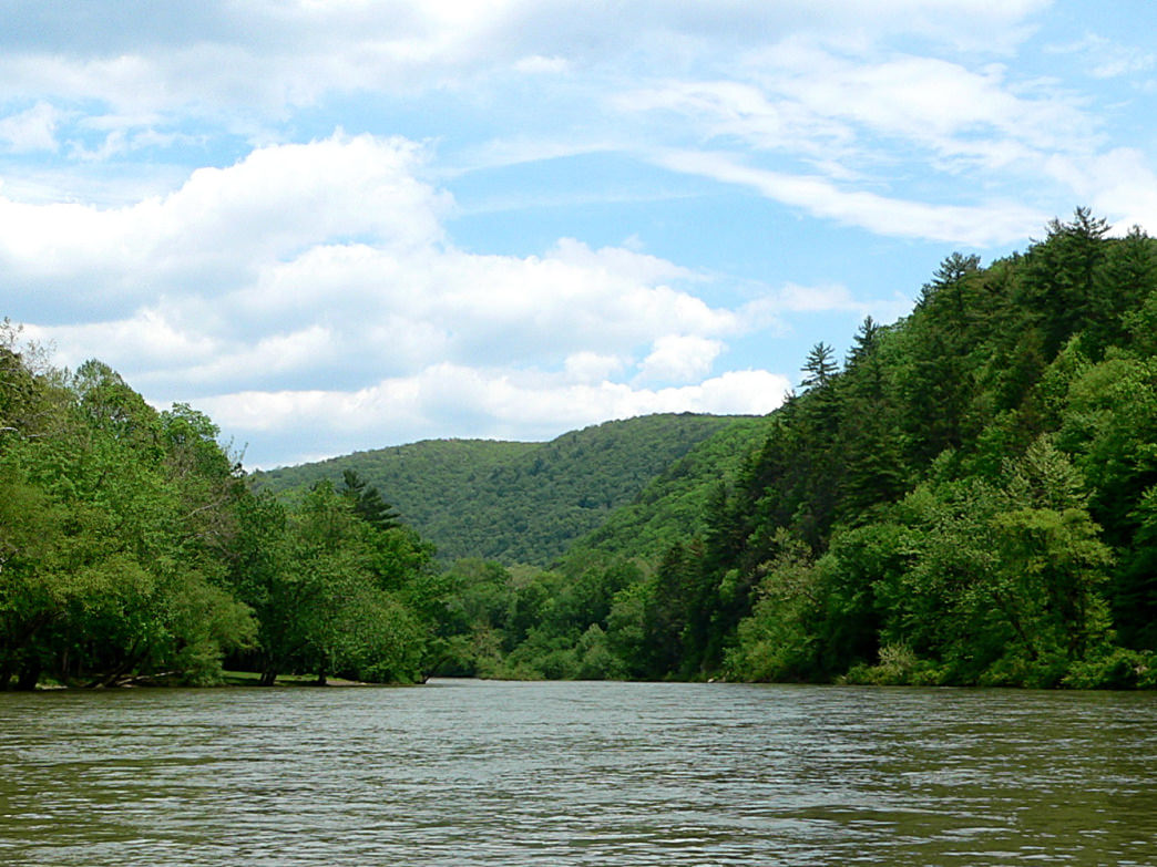 The Greenbrier River flows through Greenbrier State Forest.