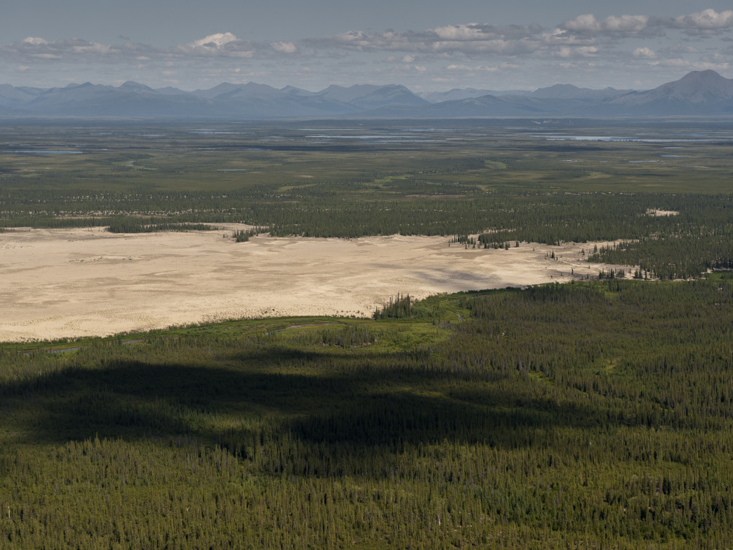 Kobuk Valley sand dunes.