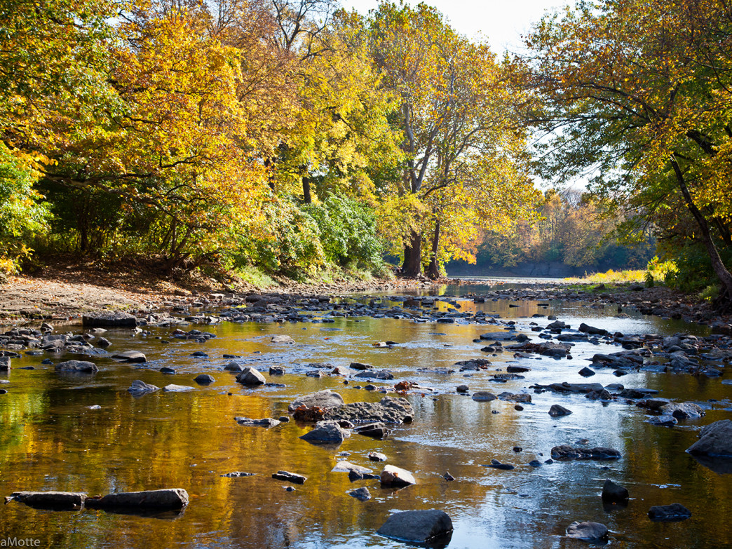 The Kankakee River State Park offers some excellent trails along the river.