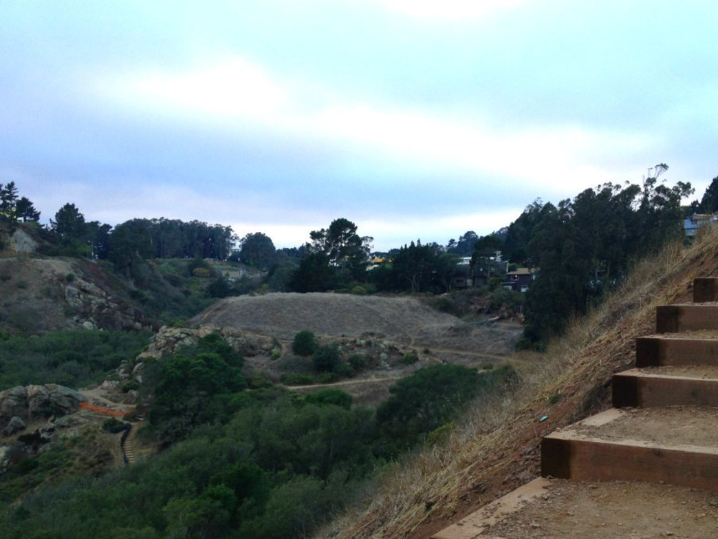 Glen Park Canyon is a hidden gem for trail runners near the Glen Park neighborhood.