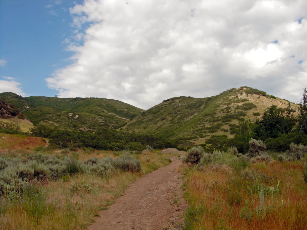 Hit the Bonneville Shoreline Trail for an intermediate hike.
