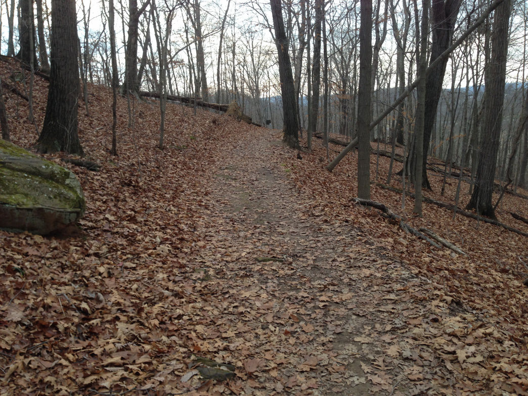 Leaf covered trail on the Main Trail Loop