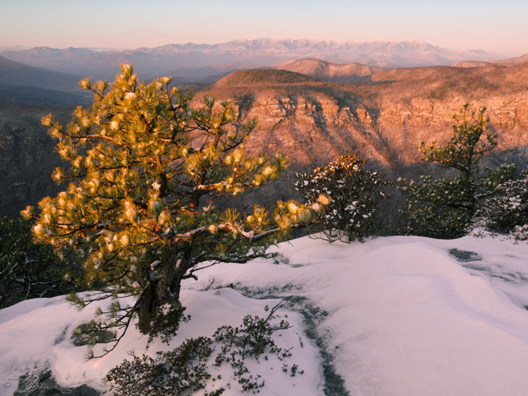 Winter is a striking time to visit the Linville Gorge Wilderness.