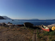 Image for Lummi Island