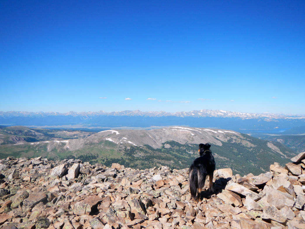 Summit views of Colorado's highest peaks from the top of Treasurevault Mountain.