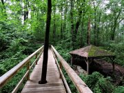 20170605_Tennessee_Chattanooga_Rainbow Lake Trail_Hiking3
