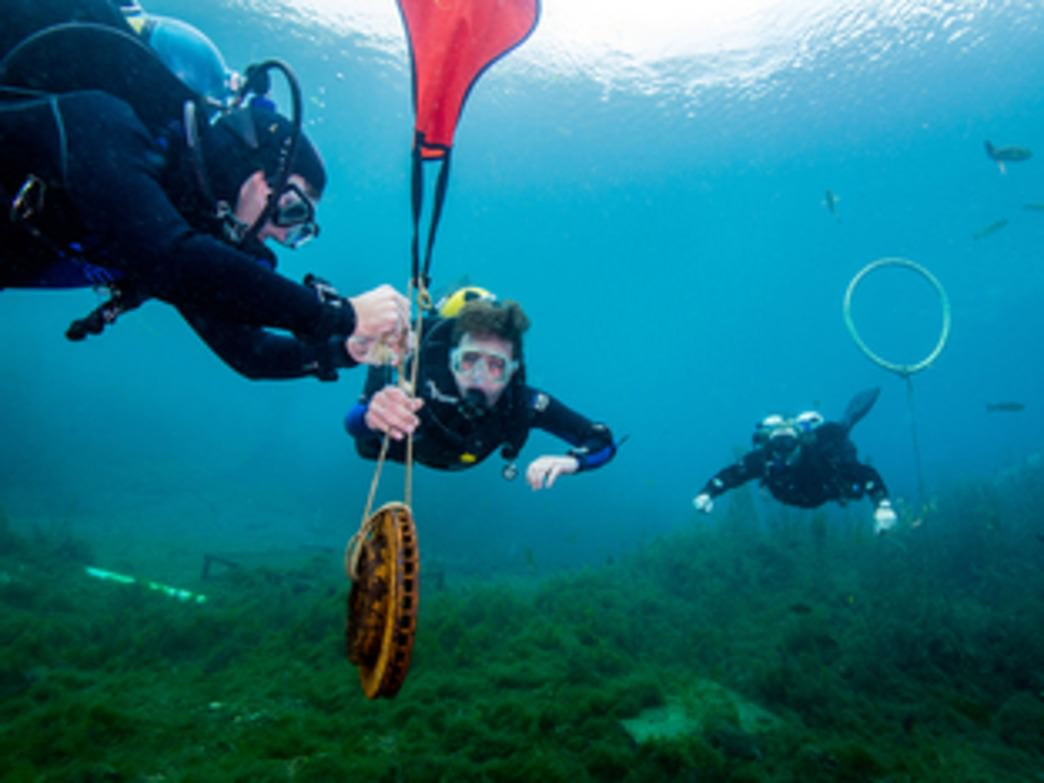 Austins top 5 scuba spots meadows center xflitez Images