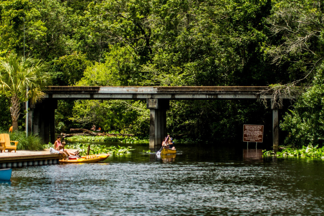 The clear waters of Wekiwa Springs is an excellent trip for paddlers of any ability.