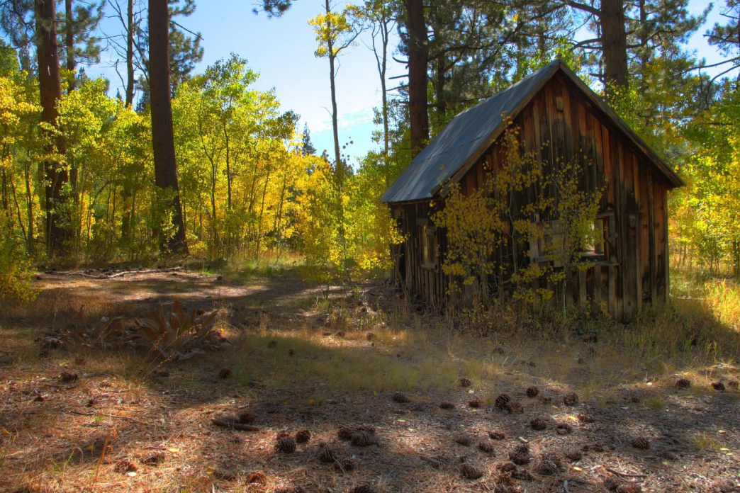 A hike to Marlette Lake reveals century old cabins surrounded by stunning aspen groves.     Aaron Hussmann