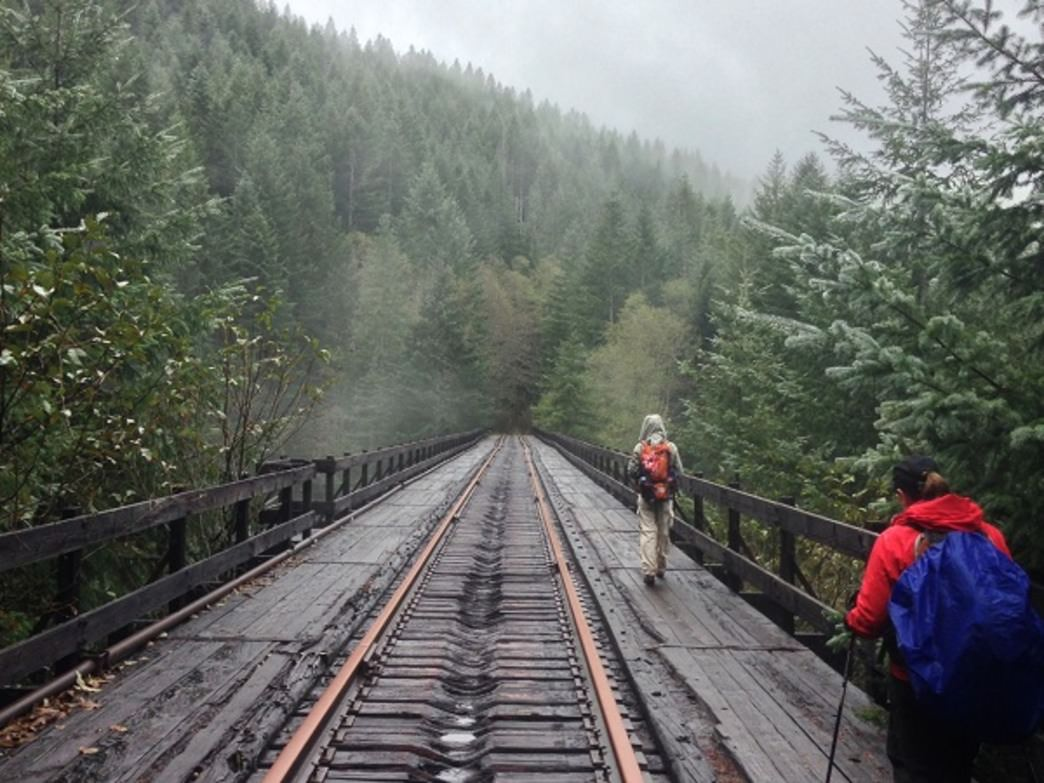 Hikers cross the 167-foot Big Baldwin Bridge over Baldwin Creek.