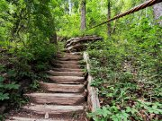 20170607_Tennessee_Chattanooga_Julia Falls Overlook_Hiking2