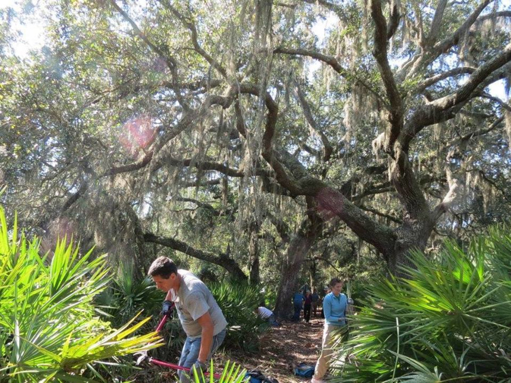 Cleaning trails at Cumberland Island.